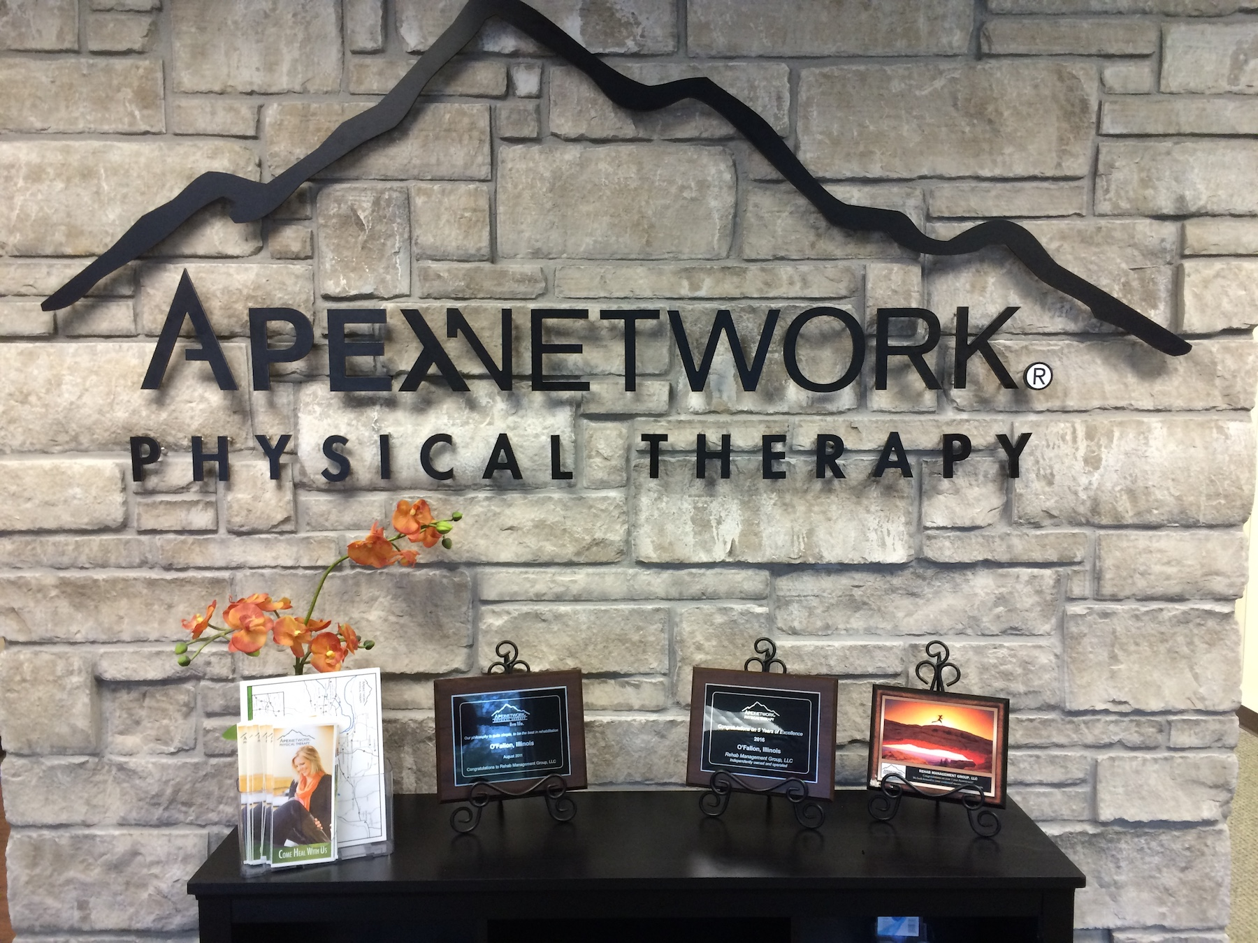 Apex Network Physical Therapy Dimensional Wall Lettering